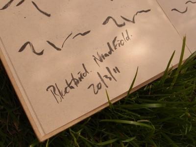 birdsong notation by Grant Sonnex - furniture designer and maker